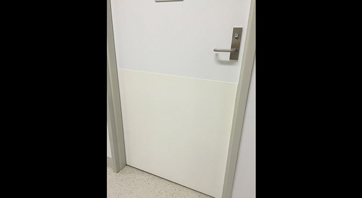 Hospital-Door-Protection.jpg