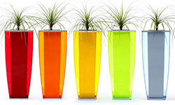 Perspex-Fluorecent-Planter-Boxes-thumb