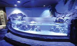 Plexiglas-Windows-for-Pools-and-Acquariums-thumb