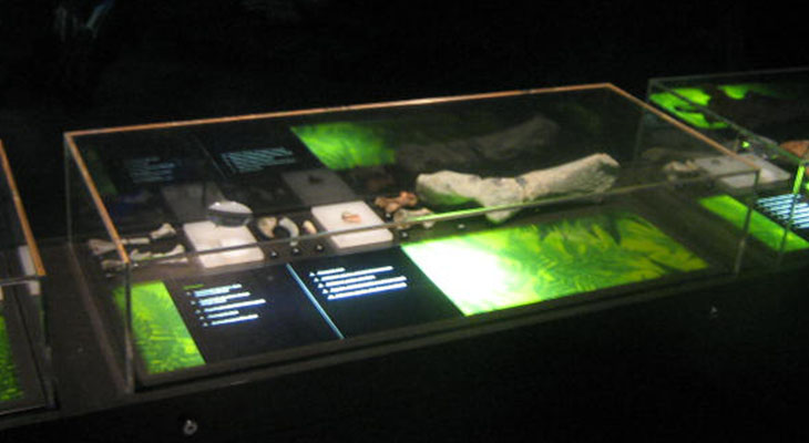Walking with the Dinosaurs Exhibition Showcases6.jpg