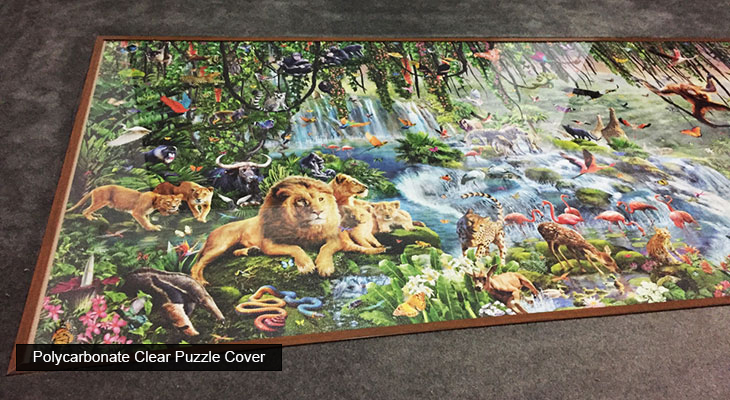 polycarbonate-clear-puzzle-cover-2.jpg
